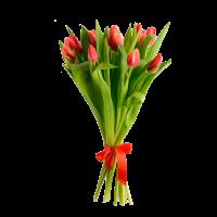Букет из 15 тюльпанов с атласной лентой