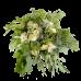 Букет из альстермерии, кустовой белой розы, вероники и зелени