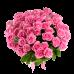 Букет из 51 розы (60 см)