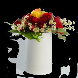 Цветы в коробке. Цветная роза с ромашкой и зеленью.
