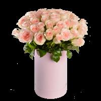 Цветы в коробке. 51 розовая роза.