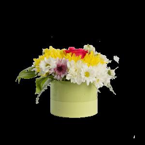 Цветы в коробке. Хризантема с зеленью.