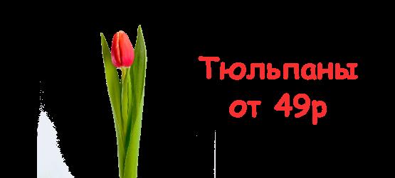 Тюльпаны от 49р